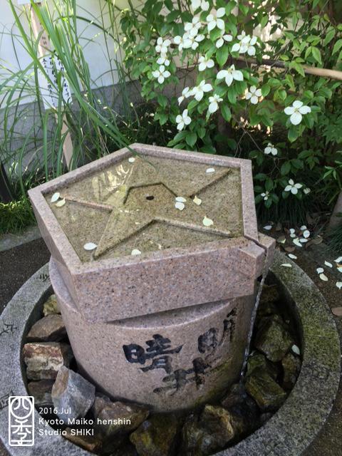 image3 (34)のコピー