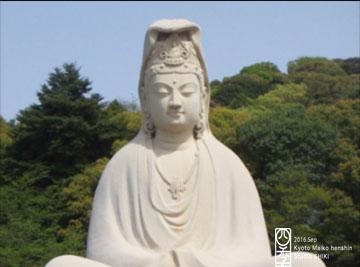 image1 (9)のコピー