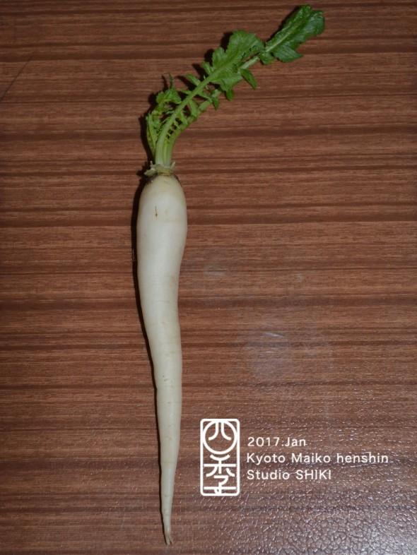 13 蘿蔔のコピー